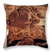 Natural Carvings Throw Pillow