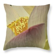 Nelumbo 'pink And Yellow' Throw Pillow