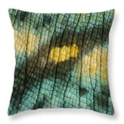 Parsons Chameleon Skin Throw Pillow