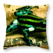 Pasco Poison Frog Throw Pillow