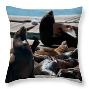 Pier 39 San Francisco Throw Pillow