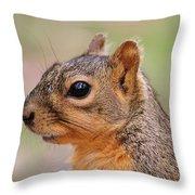 Pine Squirrel Throw Pillow