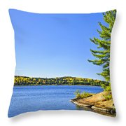 Pine Tree At Lake Shore Throw Pillow