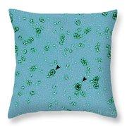 Pmpd Protein, Chlamydia Trachomatis Throw Pillow