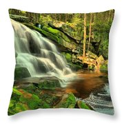 Pool In The Forest Throw Pillow