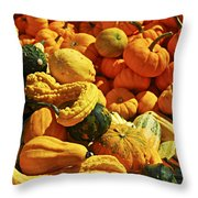 Pumpkins And Gourds Throw Pillow by Elena Elisseeva
