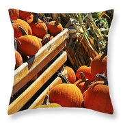 Pumpkins Throw Pillow by Elena Elisseeva