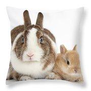 Rabbit And Baby Bunny Throw Pillow