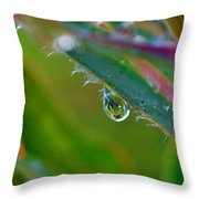 Rain Drop Throw Pillow