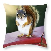 Red Squirrel On Railing Throw Pillow