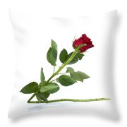 Red Tulip Throw Pillow by Bernard Jaubert