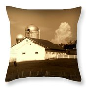 Cattle Farm Mornings Throw Pillow