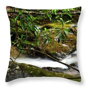 Rhododendron And Waterfall Throw Pillow
