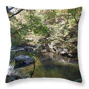 Richland Creek Throw Pillow
