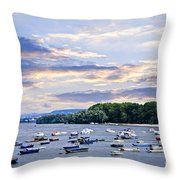 River Boats On Danube Throw Pillow