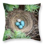 Robins Nest And Cowbird Egg Throw Pillow