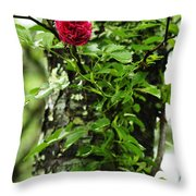 Rogue Rose Throw Pillow
