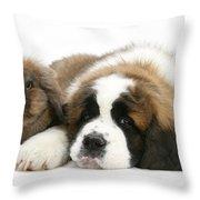 Saint Bernard Puppy With Rabbit Throw Pillow