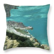 Saltwater Crocodile Crocodylus Porosus Throw Pillow