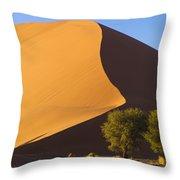 Sand Dune, Namibia, Africa Throw Pillow