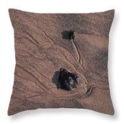 Sandmaps Throw Pillow