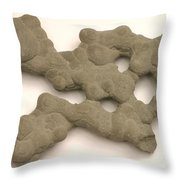 Sandstone Conglomerate Throw Pillow