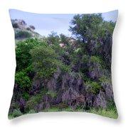 Santa Susana Mountains Throw Pillow