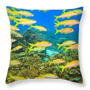 School Of Yellowfin Goatfish Throw Pillow