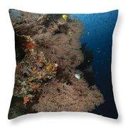 Sea Fans, Fiji Throw Pillow