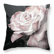 Secret Garden Rose Throw Pillow