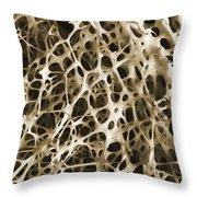 Sem Of Human Shin Bone Throw Pillow by Science Source