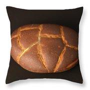 Septarian Nodule Throw Pillow