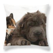 Shar Pei Puppy And Tortoiseshell Kitten Throw Pillow