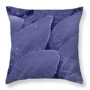Shark Skin, Sem Throw Pillow