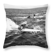 Silent Still: Beach Throw Pillow