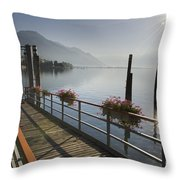 Small Port Throw Pillow