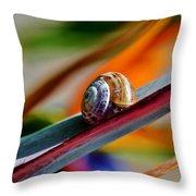 Snail On Stelitzia Reginae Throw Pillow