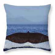 Sperm Whale Tail New Zealand Throw Pillow