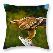 Steppe Eagle Throw Pillow
