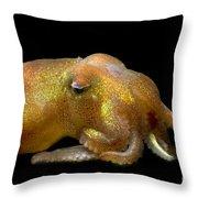 Stubby Squid Throw Pillow
