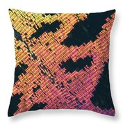Sunset Moth Urania Ripheus Throw Pillow
