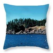 Swans Island Lighthouse Throw Pillow