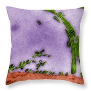 Tem Of Influenza Virus Throw Pillow by Science Source