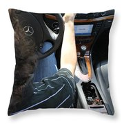Texting And Driving Throw Pillow by Photo Researchers, Inc.