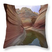 The Wave, A Fragile Standstone Throw Pillow