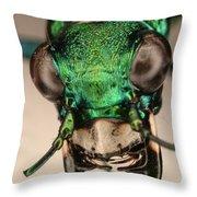 Tiger Beetle Throw Pillow