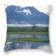 Trumpeter Swan Cygnus Buccinator Pair Throw Pillow