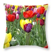 Tulip Garden University Of Pittsburgh  Throw Pillow