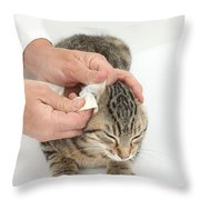 Vet And Kitten Throw Pillow