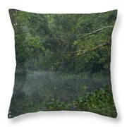View Of The Menangul River And Rain Throw Pillow
